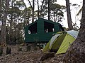 Camping at Lake St Clair - panoramio.jpg