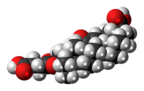 Carbenoxolone 3D spacefill.png