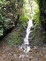 Cascada de Coroico.JPG