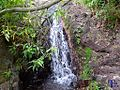 Cascada tras una rama - panoramio.jpg