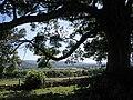 Castle Bolton (41338110010).jpg