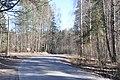 Ceļš, Bajāri, Salaspils pagasts, Salaspils novads, Latvia - panoramio.jpg