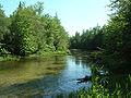 Cedar river ns.jpg