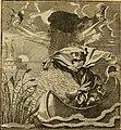 Centi-folium stultorum in quarto, oder, Hundert ausbündige Narren in folio - neu aufgewärmet und in einer Alapatrit-Pasteten zum Schau-Essen, mit hundert schönen Kupffer-Stichen, zur ehrlichen (14784519872).jpg