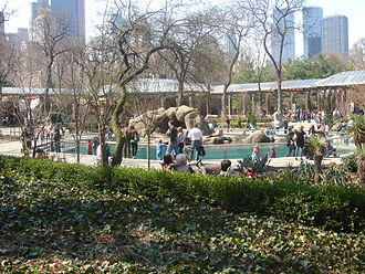 Central Park Zoo - Central area of the Central Park Zoo