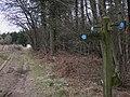 Chalk ball by bridleway junction near Warren Bottom - geograph.org.uk - 1747755.jpg