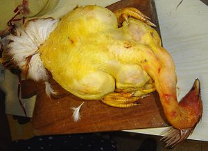 Capon - A plucked capon with its head, feet and tail feathers still attached