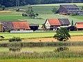 Chatzenrüti (Rümlang) - Katzensee 2014-06-09 18-56-48 (P7800).JPG