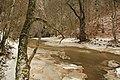 Cheile Vârghișului - Varghis Gorges - panoramio (31).jpg