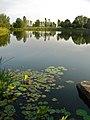 Chicago Botanic Garden - panoramio.jpg