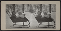 Children in a miniature sleigh, from Robert N. Dennis collection of stereoscopic views.png