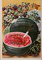 Childs' rare flowers, vegetables, and fruits (1904) (19984272814).jpg