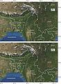 Chydaeus malaisei - ZooKeys-171-039-g011.jpg