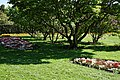 City of London Cemetery - Memorial Gardens lawn and flower beds 01.jpg