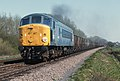 """Class 44, no. 44010 """"Tryfan"""" on a westbound train, west of Frisby on the Wreake, Leicestershire, Nigel Tout, 20.4.76.jpg"""