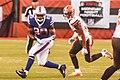Cleveland Browns vs. Buffalo Bills (20751502166).jpg