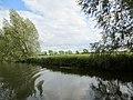 Close to Yarwell on the River Nene - June 2013 - panoramio.jpg