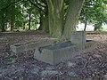Cmentarz mennonicki w Trylu.JPG