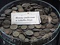 Coins taken out of the belly of the Krysia seal (Hel).jpg