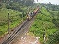 Comboio que passava sentido Boa Vista na Variante Boa Vista-Guaianã km 201 em Itu - panoramio (1).jpg