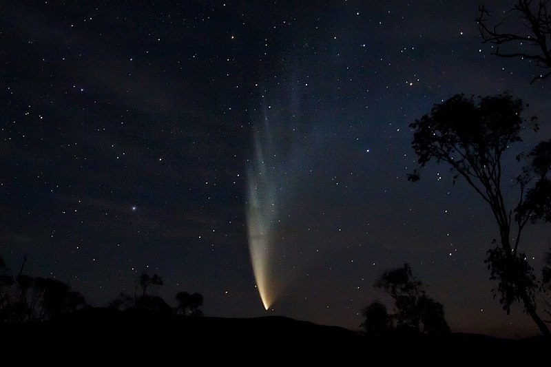 File:Comet P1 McNaught02 - 23-01-07.jpg