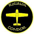 Condor Badge.jpg