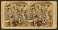 Cotton is king - A plantation scene, Georgia, by Strohmeyer & Wyman 3.png