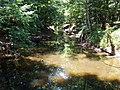 Crabtree Creek Umstead SP NC 5694 (4780005341).jpg