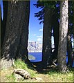 "Crater Lake NP, OR, ""Through the Trees,"" Mt. Mazama 8-28-13c (9859715344).jpg"