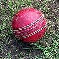 Cricket ball at Epping Foresters Cricket Club.jpg