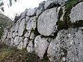 Cyclopic walls (2).jpg