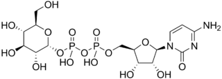 Cytidine diphosphate glucose chemical compound