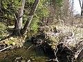 D-BY-Wasserburg aB - Feuchtgebietskomplex 'Wiesenreute' suedoestlich Kuemmertsweiler.JPG