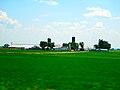 Dairy Farm near Cobb - panoramio.jpg