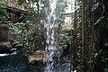 Dallas World Aquarium January 2019 08 (Orinoco Rainforest).jpg
