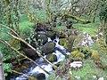 Dartmoor, Walla Brook - geograph.org.uk - 433521.jpg