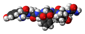 Space-filling model of the dermorphin molecule