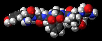 Dermorphin - Image: Dermorphin 3D spacefill