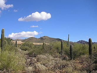 The Arizona-Sonora Desert, looking back towards the museum entrance Desertmuseum06 1.JPG