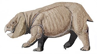 Dicynodont - Lisowicia, a giant dicynodont from Late Triassic of Poland