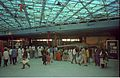 Diplodocus - Dinosaurs Alive Exhibition - Science City - Calcutta 1995-June-July 057.JPG