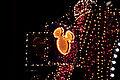 Disney's Electrical Parade (4526908241).jpg