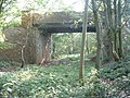 Disused railway line - geograph.org.uk - 193977.jpg