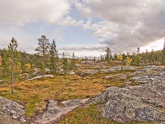 Øvre Dividal National Park - Part of Øvre Dividal