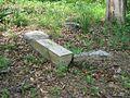 Dixon Cemetery Helena AR 004.jpg