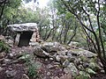 Dolmen de Trillol - Rouffiac-des-Corbières 11.JPG