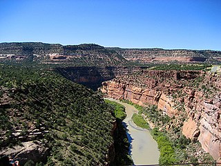 Dolores River river in the United States of America