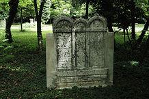 Finale Emilia: tomba di Donato Donati
