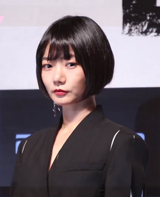 Doona Bae promoting The Tunnel.png