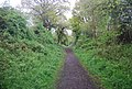 Downs Link, north westward, Cranleigh - geograph.org.uk - 1879200.jpg